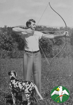 Russell Willcox with his famous Duoflex at full drawn. Note the working recurve! From ELMER (1952: f. 160)   © Falk 2008