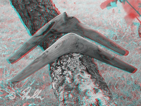 red-cyan-Anaglyph of huhe Black Locust Boomerangs